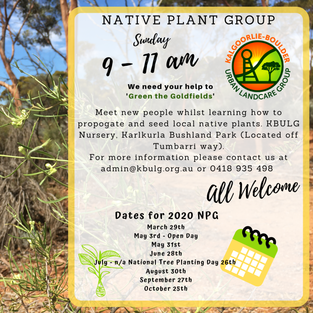 Native Plant Group 2020