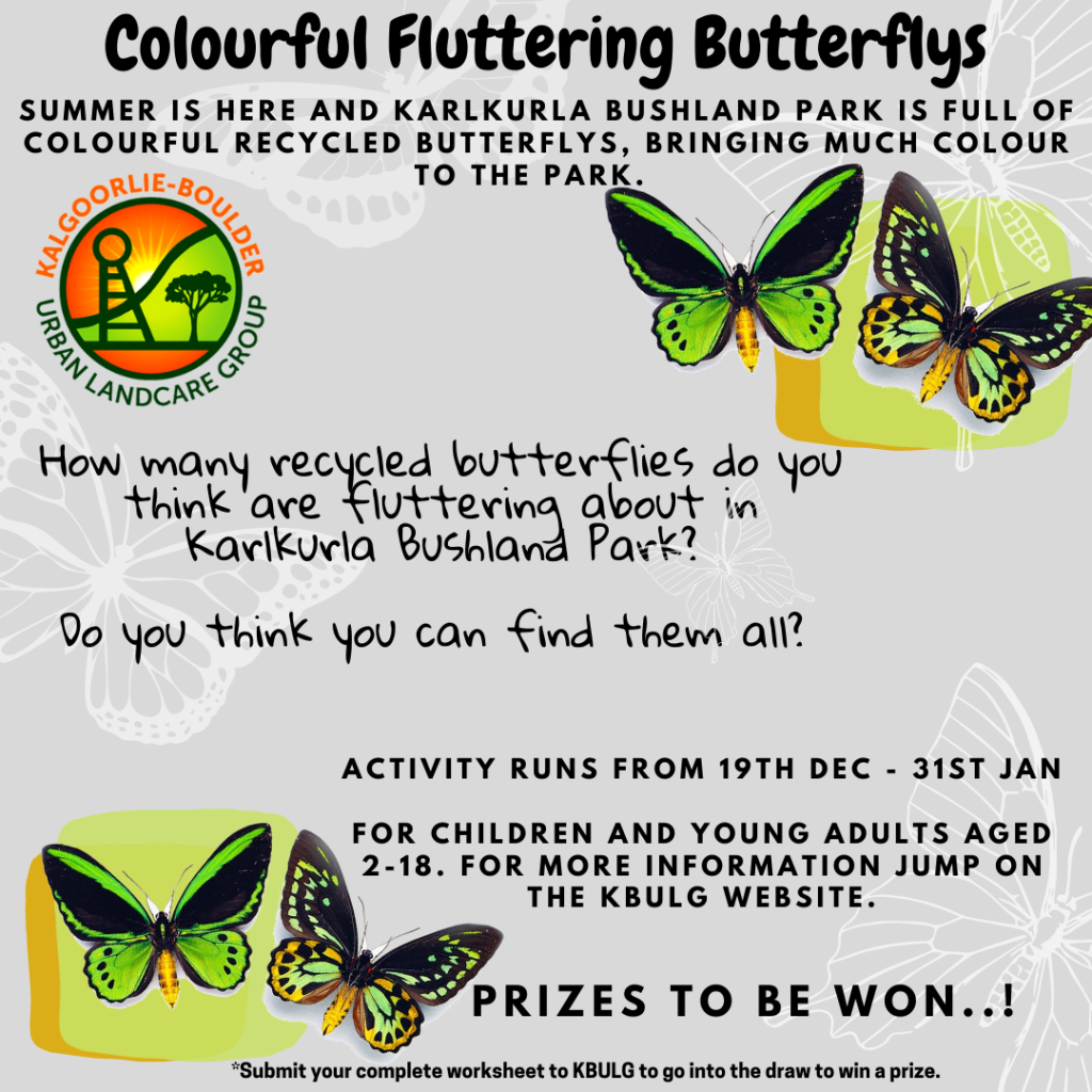 Butterflys a Fluttering competition